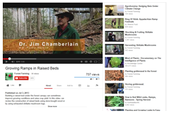 "Screen shot of the YouTube video ""Growing ramps in raised beds"" – one of the Forest farming video series"