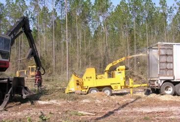 The biomass chipper at work.
